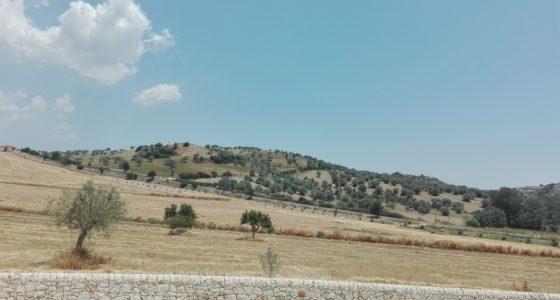 Campagna Ragusana